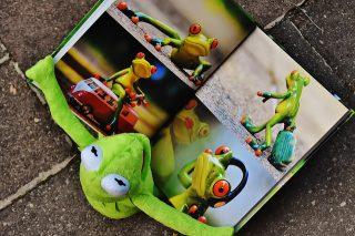 多読で英語脳を手に入れる!おすすめの児童書5選