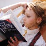 いつかは役立つ?辞書のない言語をマスターする5つの方法