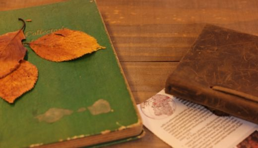 英語を勉強するのに最適な面白い洋書5選
